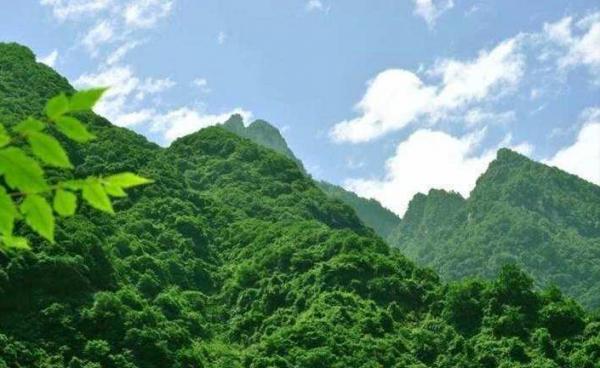 司法部 自然资源部负责人就修订后的《中华人民共和国土地管理法实施条例》答记者问